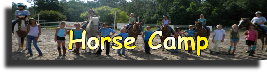 horsecamp.png