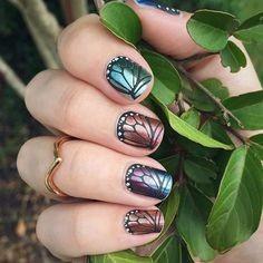 Butterfly Bliss.jpg
