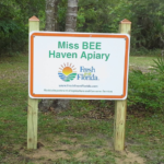MissBeeHavenApiary.png