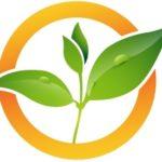 Fresh - Logo - Emblem.jpg