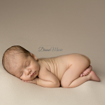newborn photography jacksonville.png