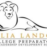 Casual Lion Logo.jpg