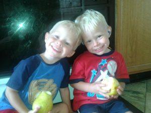 Tattersall Twins
