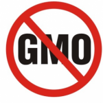 GMO's- Are You Feeding Them to Your Kids?