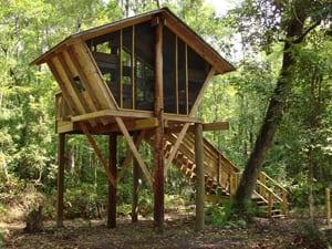 Camp Chowenwaw Tree House