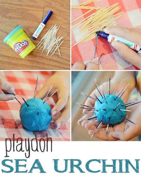 Sea Urchin Beach Craft Jax Moms Blog