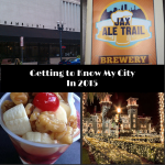 Getting to Know My City :: My 2015 Jacksonville Bucket List