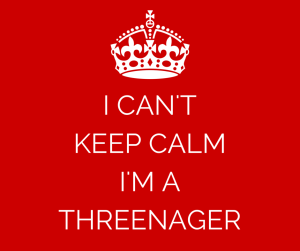 I CAN'T KEEP CALM I'M A THREENAGER