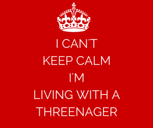 I CAN'T KEEP CALM I'M LIVING WITH A THREENAGER
