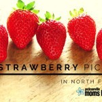 The Ultimate Guide to Strawberry U-Pick Farms in North Florida