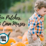 The Best Pumpkin Patches, Farms, & Corn Mazes In Jacksonville!