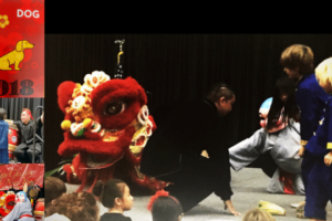 Experience the Chinese New Year Celebration