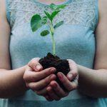 Gardening Tips for the Black Thumb