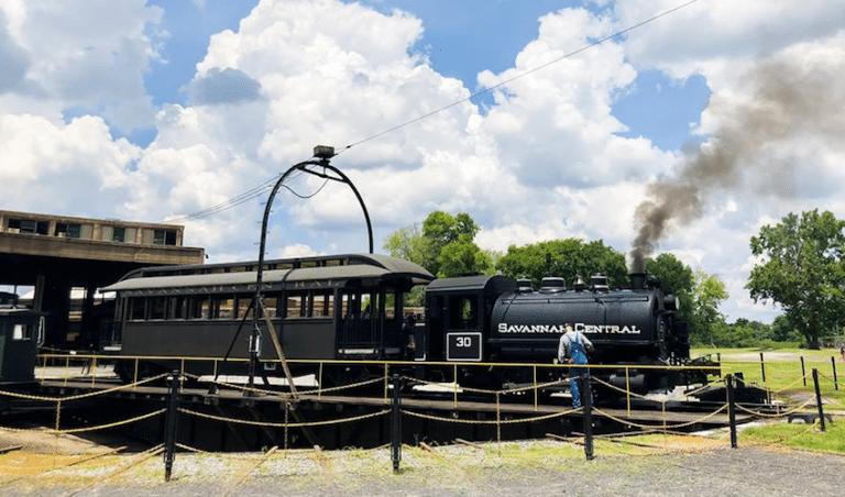 savannah train