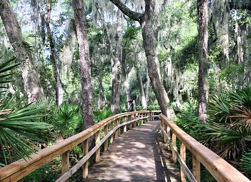 Guide to Great Family Hiking Trails in Jacksonville