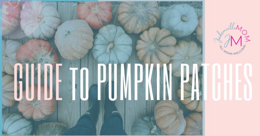 Pumpkin Patches Jacksonville