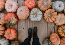 Feet at Pumpkin Patch in Jacksonville