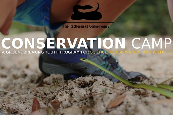 The Rattlesnake Conservancy Conservation Camp